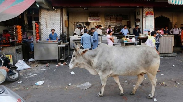 Indian mob kills Muslim teen over 'carrying beef'