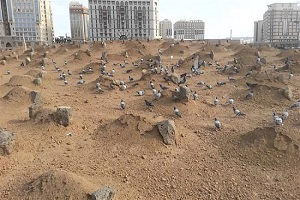 US Muslims mark anniversary of Jannat al-Baqi destruction by Riyadh